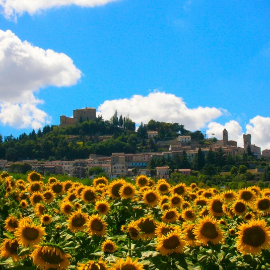 The Village of Bertinoro, Le Marche, Italy